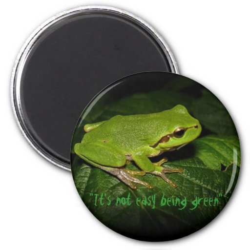It's not easy being green frog magnet