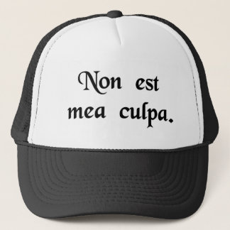 It's not my fault. trucker hat