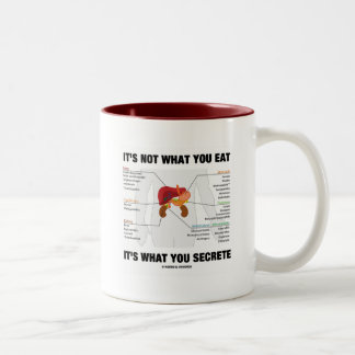 It's Not What You Eat It's What You Secrete Mugs