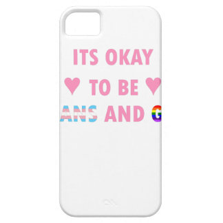 It's Okay To Be Trans And Gay (v1) iPhone SE/5/5s Case
