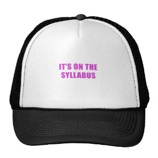 Its On the Syllabus Trucker Hat