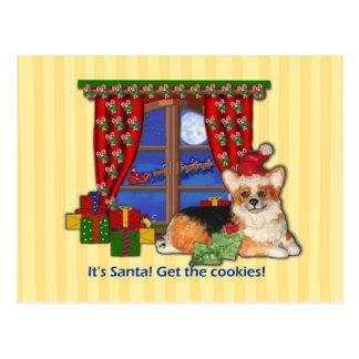 It's Santa! Get the Cookies! Corgi Christmas Card