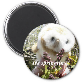 It's Springtime! 2 Inch Round Magnet