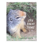 It's That Time Groundhog's day Invitation