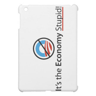 It's The Economy Stupid iPad Case