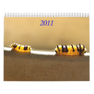 It's the Little Things in Life Wall Calendars