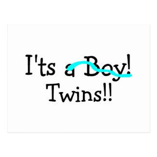Its Twins (Boys) Postcard