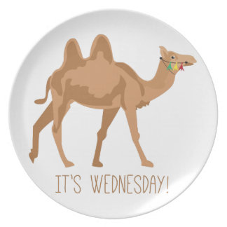 Its Wednesday Party Plate