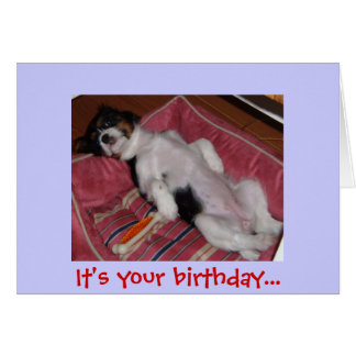 It's your birthday... card
