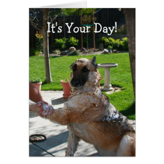 It's Your Day German Shepherd Birthday Card