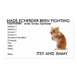 ITSTY AND JIMMY Double-Sided STANDARD BUSINESS CARDS (Pack OF 100)