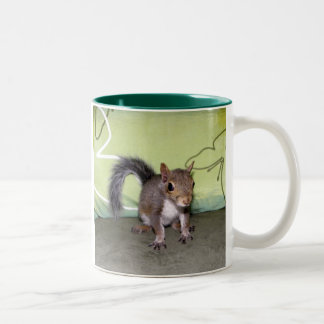 Itsy Bitsy Squirrel - A Two-Tone Coffee Mug