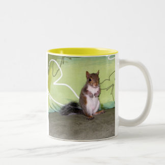 Itsy Bitsy Squirrel - D Two-Tone Coffee Mug