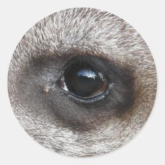 I'v got my eye on you classic round sticker