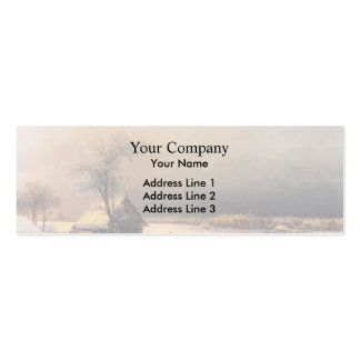Ivan Aivazovsky- Moscow in Winter, Sparrow Hills Double-Sided Mini Business Cards (Pack Of 20)