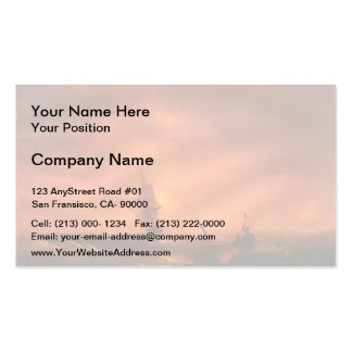 Ivan Aivazovsky- Survivors Double-Sided Standard Business Cards (Pack Of 100)