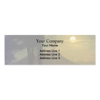 Ivan Aivazovsky-The Bay of Naples at moonlit night Business Card