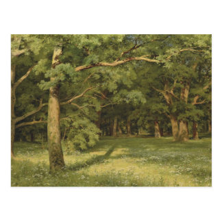 Ivan Shishkin- The Forest Clearing Post Cards