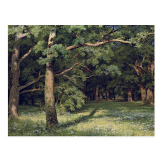 Ivan Shishkin The Forest Clearing Postcard