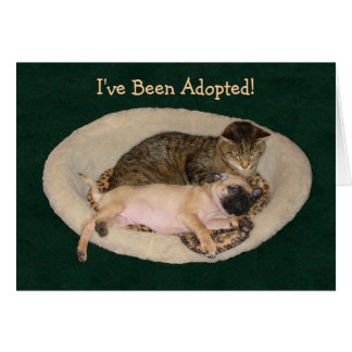 I've Been Adopted Greeting Card