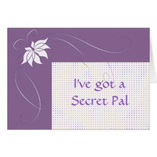I've got a secret pal card