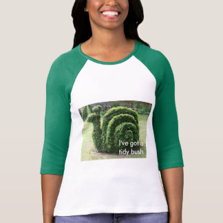 I've got a tidy bush. Topiary garden snail fun top