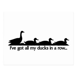 I've got all my ducks in a row... postcard