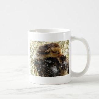 I've Got An Itch Coffee Mug