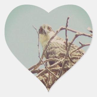I've got my eyes on you heart sticker