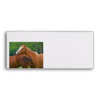 I've Got Your Back Envelopes