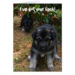 Ive got your back! German Shepherd Puppy Greeting Greeting Card
