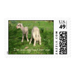 I've Lost My Head Over Ewe Postage Stamp