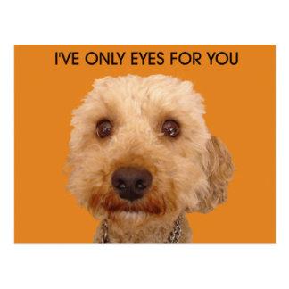I've only got eyes for you. postcard
