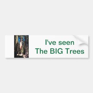I've Seen the BIG Trees Bumper Sticker