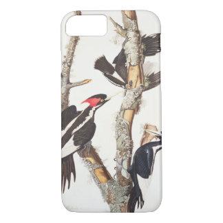 Ivory-billed Woodpecker, 1829, () iPhone 8/7 Case