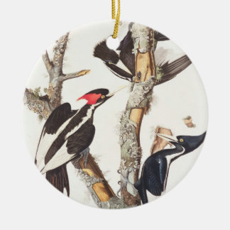 Ivory-billed Woodpecker, 1829, (print) Ceramic Ornament