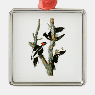 Ivory-billed Woodpecker Audubon Birds of America Metal Ornament