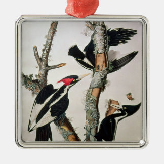 Ivory-billed Woodpecker, from 'Birds of America' Metal Ornament