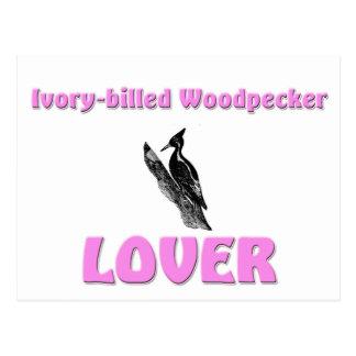 Ivory-Billed Woodpecker Lover Postcard