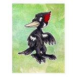 Ivory-Billed Woodpecker Postcard