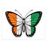 Ivory Coast Butterfly Flag Postcard