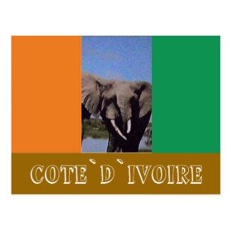 Ivory Coast flag Postcard