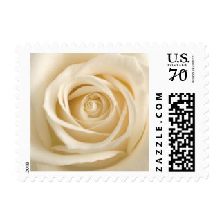 Ivory Rose Wedding Postage Stamps