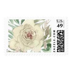 Ivory Rose Wedding Stamp at Zazzle
