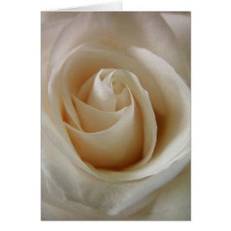 Ivory White Rose Flower Card