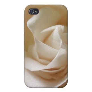Ivory White Rose Flower Cases For iPhone 4