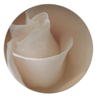 Ivory White Rose Flower Floral Photo Melamine Plate