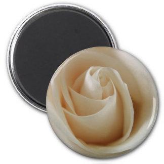 Ivory White Rose Flower 2 Inch Round Magnet