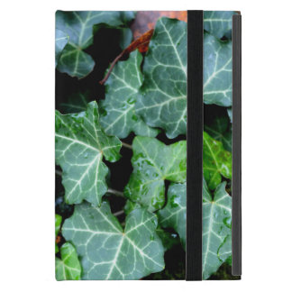 Ivy and Field stone Cover For iPad Mini
