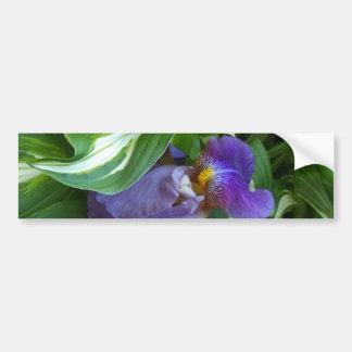 Ivy and Iris Car Bumper Sticker